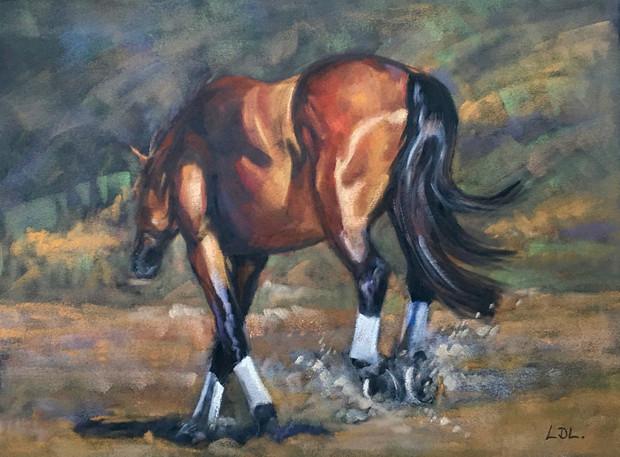 Bay Horse Prancing
