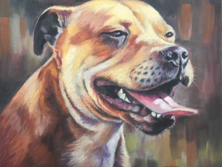 Latest Dog Portrait Commission