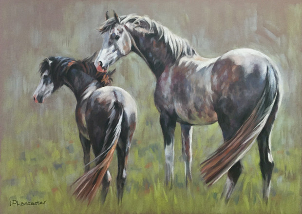 Grey Arab and Grey Welsh Pony pastel painting