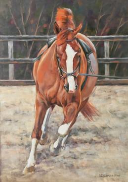 Chestnut Holsteiner Horse On Lunge Line Pastel Painting