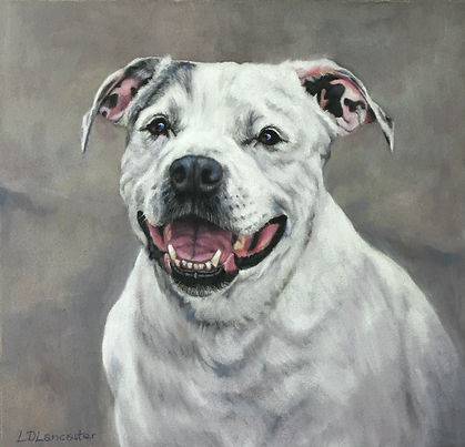 Staffy Pastel Portrait Painting