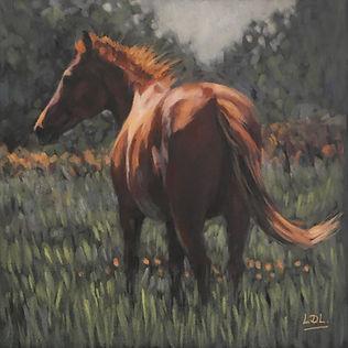 Chestnut Horse in Meadow