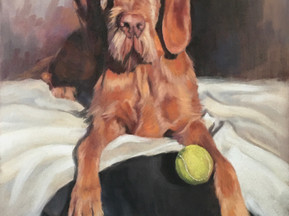 Wire Haired Hungarian Vizsla Commissioned Pastel Portrait Painting