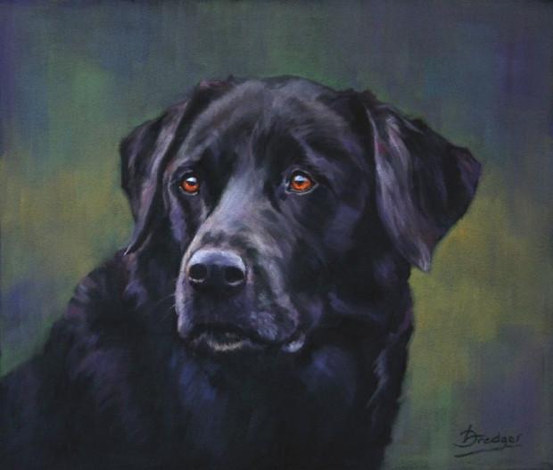Black Labrador Pastel Portrait