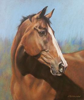 Bay Horse Pastel Portrait Painting