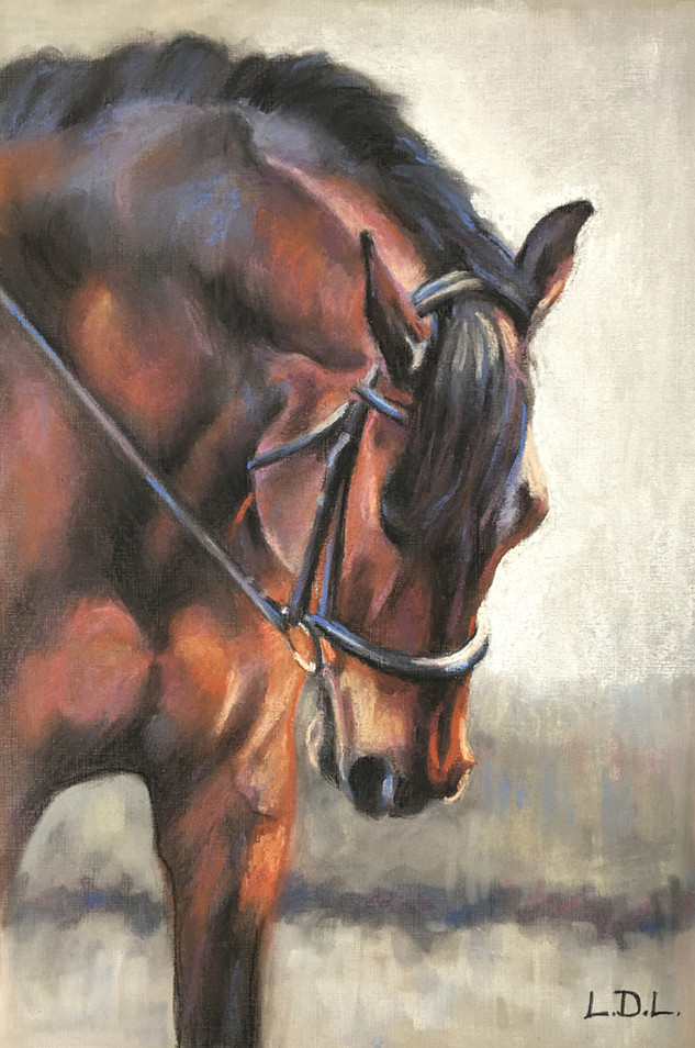 Stretch Down - Bay Dressage Horse Painting