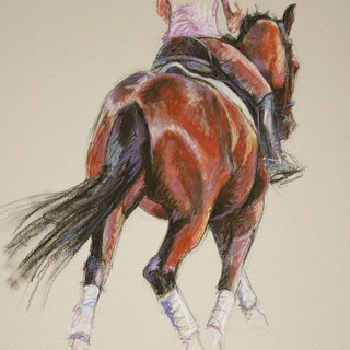 Bay Dressage Horse Painting
