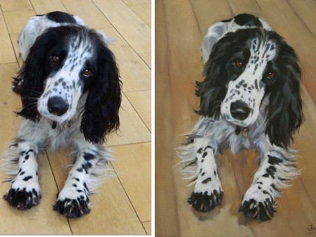 From Photo to Pastel Pet Portrait