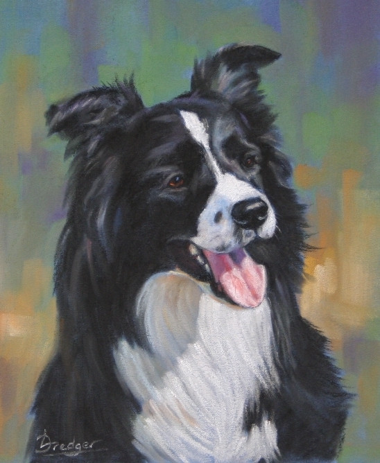 Pastel Portrait of a Border Collie with a colourful background