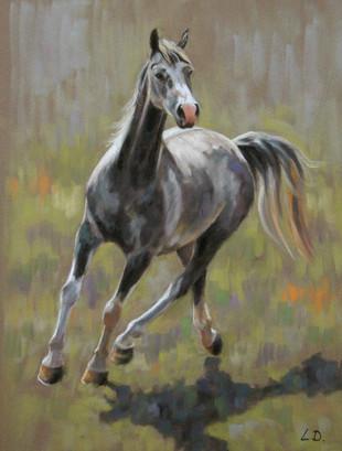 Grey Arab Horse Painting
