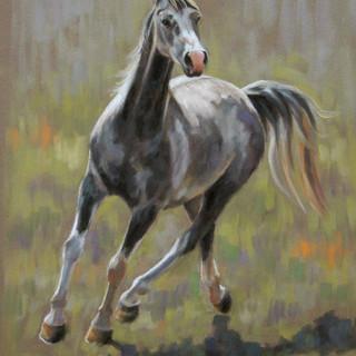 Grey Arab Pastel Painting