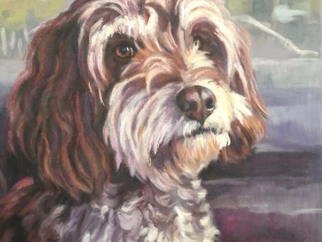 Dog portraits and horse portraits - Lorna Lancaster - Etsy Shop