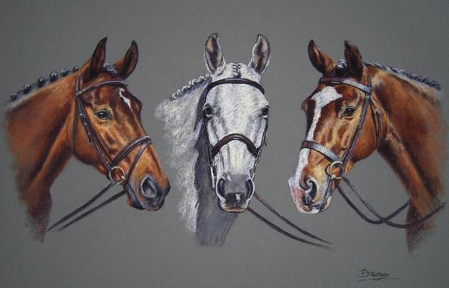 Three Horses Portrait