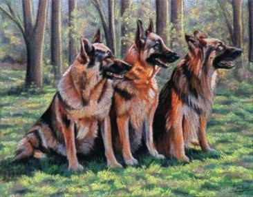 German Shepherds Paintings