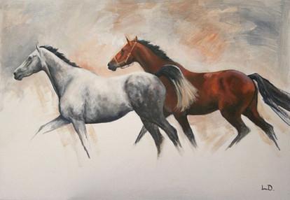 Grey and Bay Horses Painting