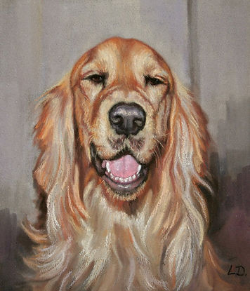 Cockapoo pastel dog portrait