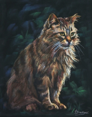 Long haired Tabby Cat Painting