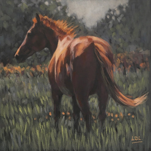 Sunny Windy Day - Chestnut Horse in field