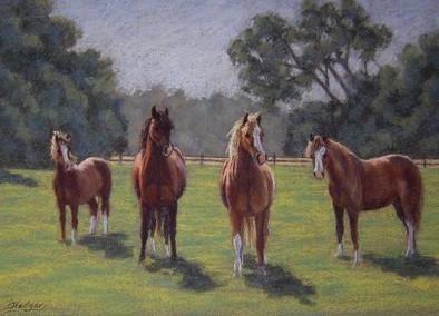 Welsh Ponies pastel painting