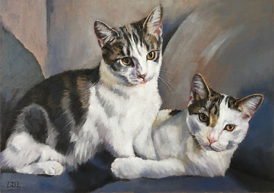 Tabby and White commissioned pastel cat portrait