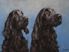 Black Cocker Spaniels Commissioned Pastel Portrait