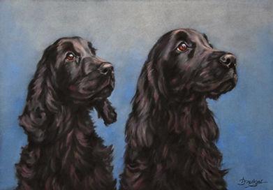 Black Cocker Spaniels Pastel Portrait