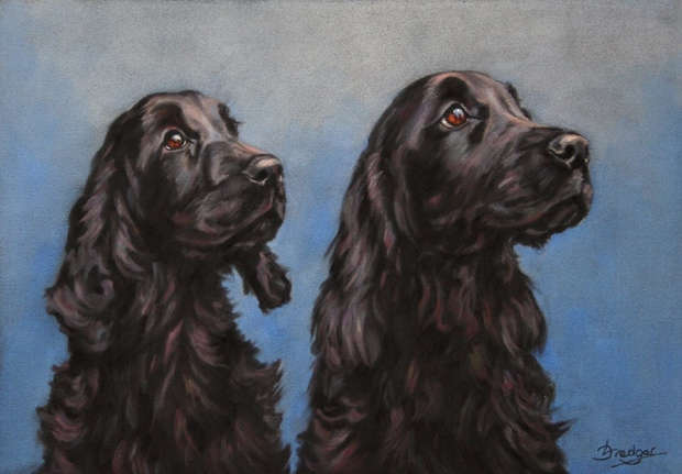 Cocker Spaniels Portrait