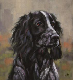 Cocker Spaniel - Pastel Portrait