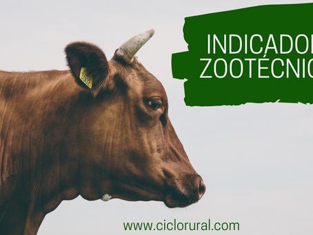 Indicadores Zootécnicos para Seleção de Matrizes