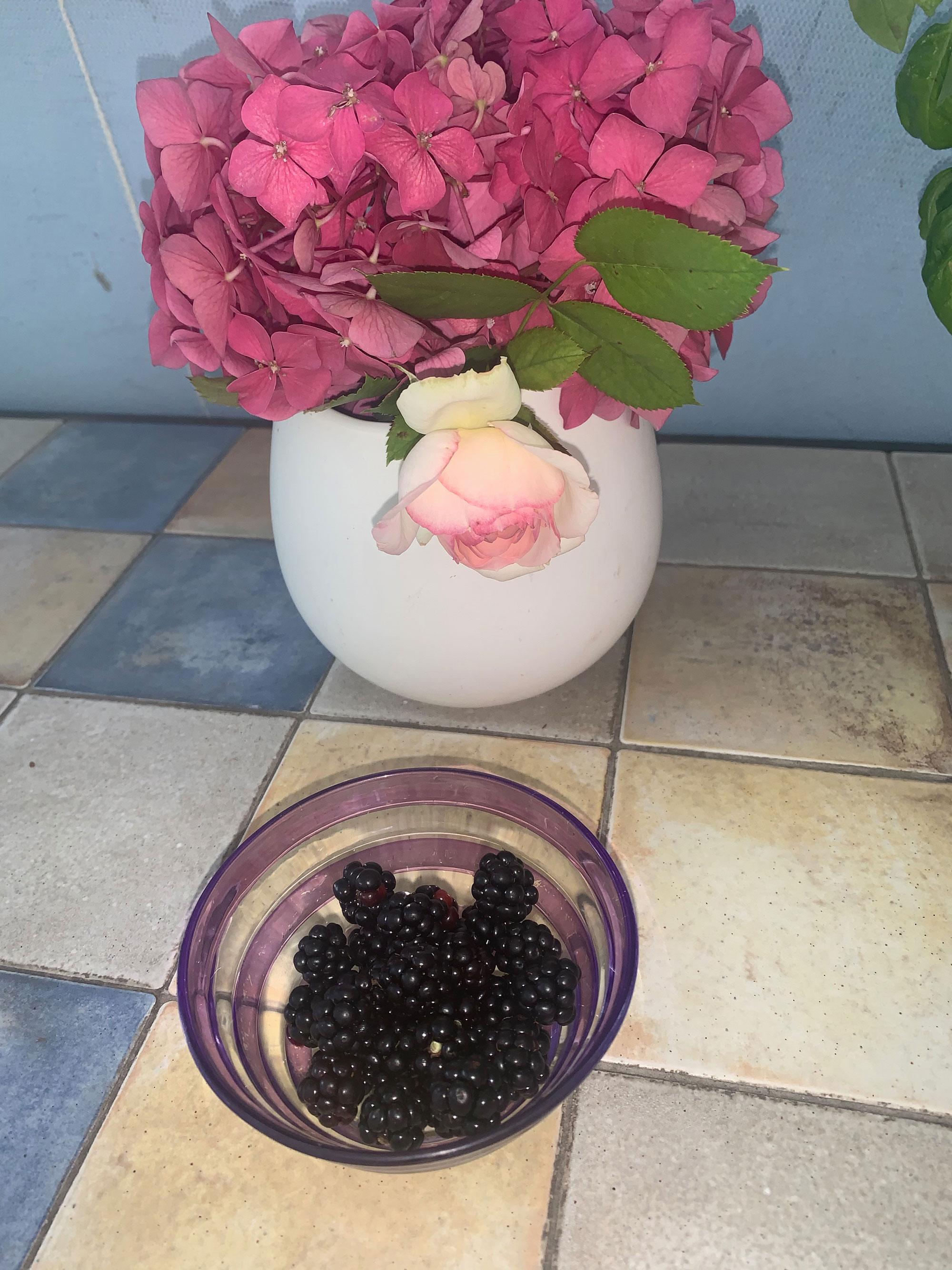 homegrown blackberries