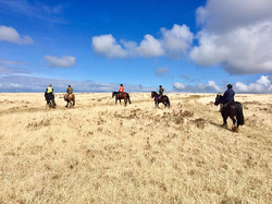 Exmoor Riding