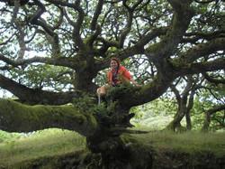Plenty of tree climbing around!