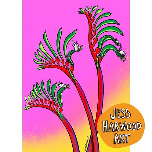 Kangaroo Paw fine art print