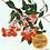 Thumbnail: 'Baby Orange' Gum Blossoms Fine Art Print