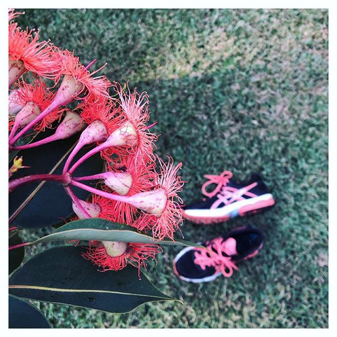 Gum blossoms and sneakers