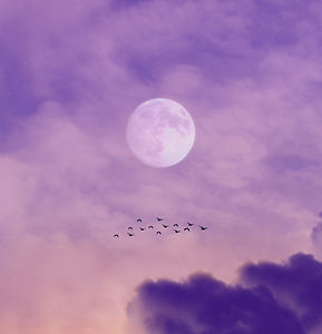 full moon over clouds during night time_edited.jpg
