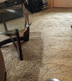 carpet cleaning central point oregon