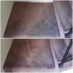 carpet cleaner medford oregon