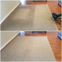 rug cleaning central point