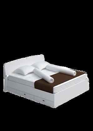 เตียง6'    DB 04 DDK