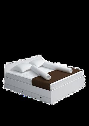 เตียง6'   DB 05 DDK