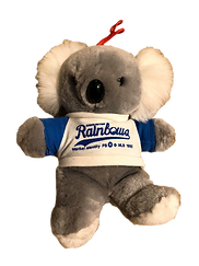 charleston rainbows souvenir bear