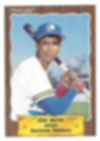 1990 charleston rainbows minor league baseball player Jose Mateo Infield
