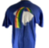 charleston rainbows t shirt