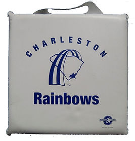 charleston rainbows minor league baseball vintage seat cushion memorabilia rare