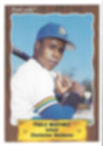 1990 charleston rainbows minor league baseball player Pablo Martinez