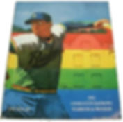 1992 charleston rainbows minor league baseball program