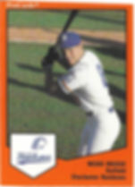 Nicko Riesgo1989 charleston rainbows minor league baseball