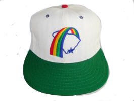 Charleston rainbows vintage baseball hat  cap green  brim throwback