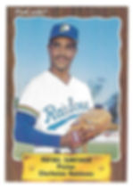 1990 charleston rainbows minor league baseball player Rafael Santiago Pitcher